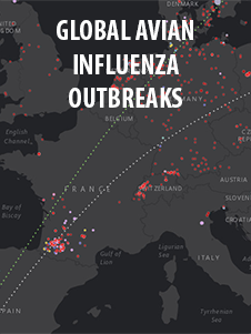 Global Avian Influenza Outbreaks product. Since late 2015, a large number of varying subtypes of avian influenza outbreaks have impacted countries around the world. The Global avian influenza outbreaks interactive product illustrates the overlap of zoonotic influenzas among humans and animals with an infographic, time animation and interactive maps.