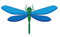 Image of a dragon fly