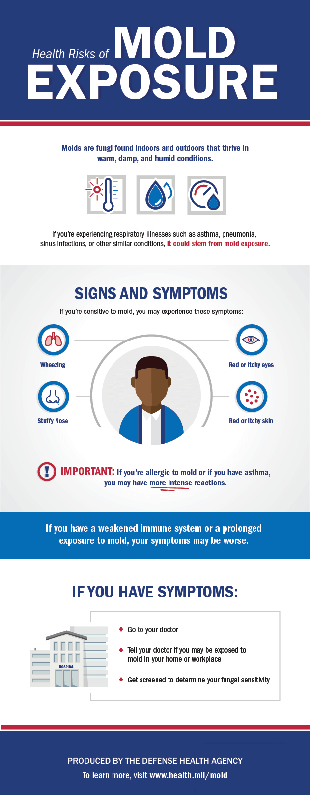 This infographic describes what mold is and describes the signs and symptoms of a mold allergy