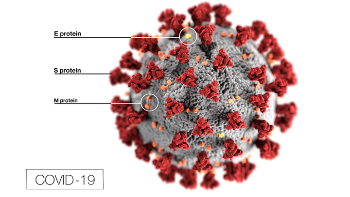 This illustration, created at the Centers for Disease Control and Prevention (CDC), reveals ultrastructural morphology exhibited by coronaviruses. The illness caused by this virus has been named coronavirus disease 2019 (COVID-19). (CDC Illustration)