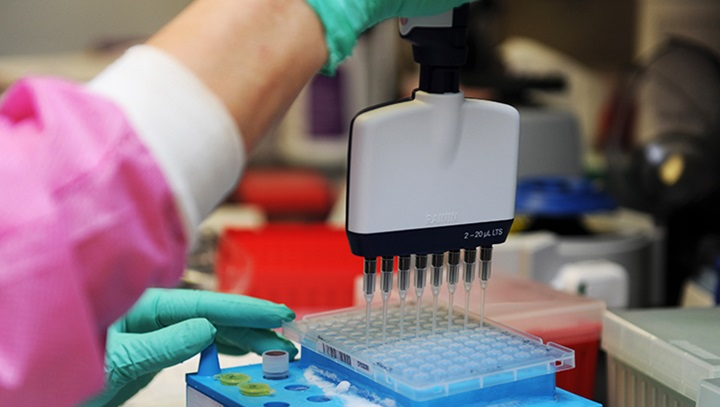 Image of person testing genomes in a lab