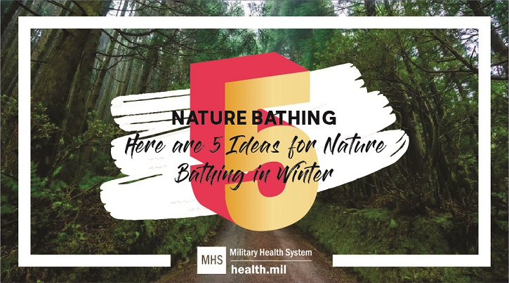 Links to 5 Ideas for Nature Bathing in Winter