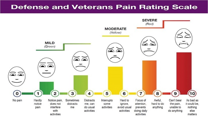 The Defense and Veteran's Pain Rating Scale