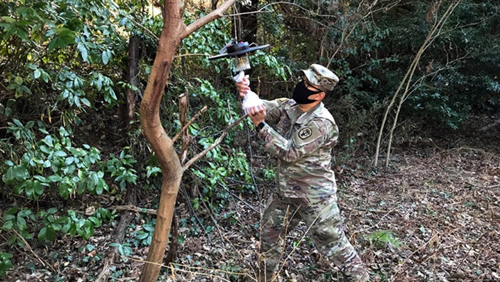 Military personnel wearing a face mask hanging a light in a tree
