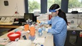Medical personnel in PPE, conducting lab tests