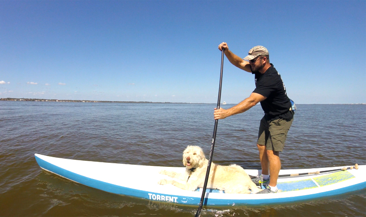 Collins enjoys stand-up paddle boarding for how it helps him with TBI. His service dog, Charlie, likes it too. (Courtesy Photo by U.S. Army Special Operations veteran Josh Collins)