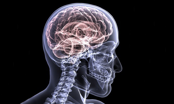Image result for concussions